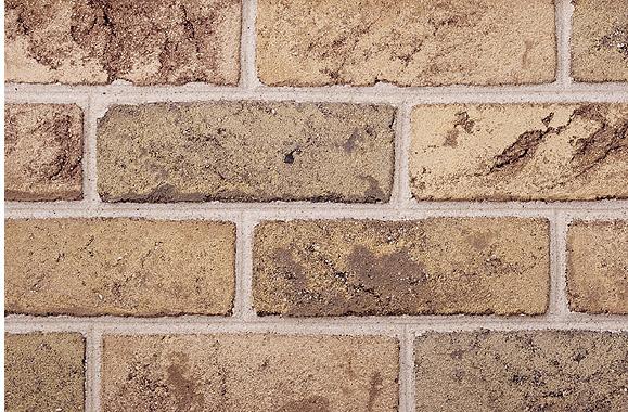 Alamo Blend Tan Belden Brick Samples