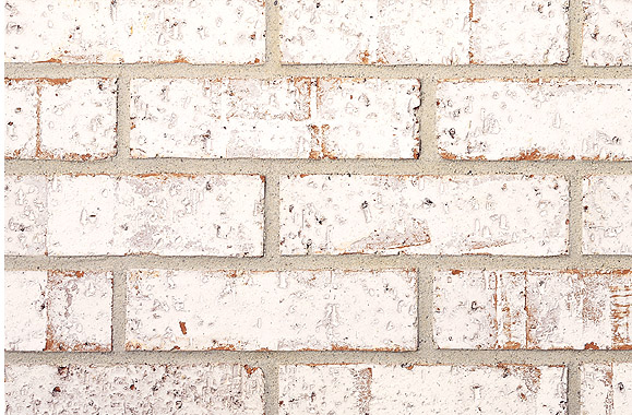 Frosted Whites White Belden Brick Samples